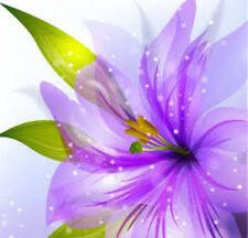 "20 water slide nail art transfers decals ""summer"" delicate purple flowers"