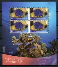 Kaiman-Inseln Cayman 2012 Block Fische Fishes Poissons Pesci Meerestiere MNH