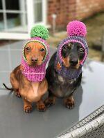 The Pom Pom Dog Hat snood . Small Chihuahua, Yorkie Daschund. Many Colours