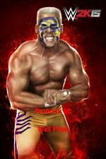 STING WWE WCW WWF DIVAS Poster Print 24x36 WALL Photo 1
