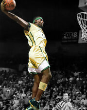 St Vincent - St Mary LEBRON JAMES Glossy 8x10 Photo Basketball Spotlight Print