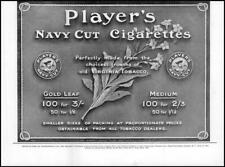 1912 ADVERTISING Players Navy Cut Cigarettes Virginia Tobacco (62)