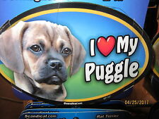 I Love My Puggle 6  00004000 inch oval magnet for car or anything metal New