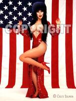 Fridge Magnet Elvira Old Glory nude vampire American flag Halloween babe R