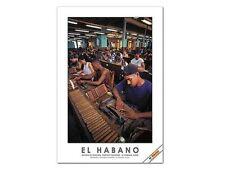 Habanos / El Habano Cigar Poster Workshop Partagas Factory. La Habana, Cuba.