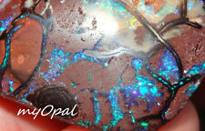 +++ Traumhaftes Koroit Opal Sammlerstück - elektrisch grün blau gelb lila VIDEO
