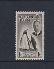 Falkland Inseln - 1952,1s Schwarz Gentoo Penguin Vogel Briefmarke - M/M - Sg 180