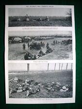 WW1 Guerra Mondiale 1918 artiglieria e truppe inglesi + medaglia Brigata Pisa