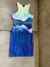 H&M Beyonce Collaboration MountaiN Lake Print Cut Out Scuba Bodycon Dress XS