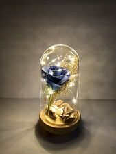 Enchanted Forever Rose Flower In Glass LED Light Wedding Quinceaño's Valentine