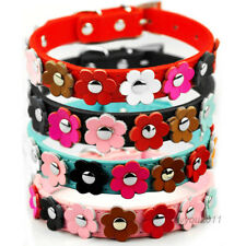 5 Colour Flower Stud PU Leather Small Dog Cat Pet Collars Puppy Collars S/M
