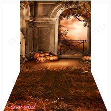Halloween10'x20'Computer/Digital Vinyl Scenic Photo Backdrop Background SW902B88