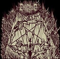 DISRUPTED - 12'' LP - Morbid Death