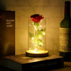 Ewige Rose LED Licht Schöne Blume Glas Ewige Rose für Frauen Geschenk Wohnkultur
