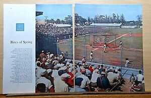 1956 2 page magazine baseball photo article - Chicago White Sox at Fort Myers