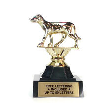 Greyhound Trophy- Racing- Dog- Animal- Deskto