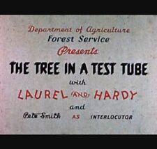 """SUPER 8 CINE FILM """"Laurel & Hardy nella struttura in una provetta"""" 200 FT (ca. 60.96 m) colore/Suono"""