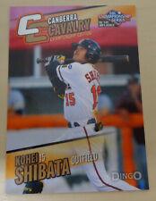 KOHEI SHIBATA 2013/14 Aussie Baseball League - Canberra Cavalry - Hanshin Tigers