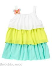 Nwt Gymboree Colorblock Ruffle Dress Butterfly Catcher 12 18 mo 2T 5T