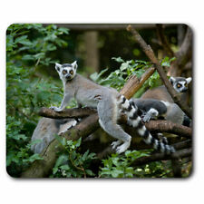 Computer Mouse Mat - Cool Tailed Lemur Madagascar Office Gift #12667
