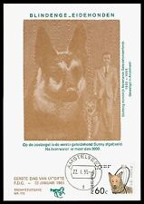 NIEDERLANDE MK 1984 HUNDE BLINDENHUND GUIDE DOG CARTE MAXIMUM CARD MC CM bv77
