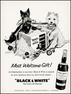 1960 Black&White Scottish Terriers Black & White Scotch retro art print ad adl83