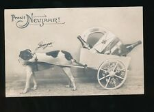 Dog Cart New Year greetings Germany Used 1908 RP PPC
