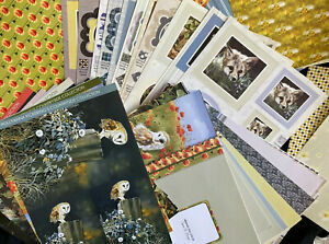 Pollyanna Pickering DIE CUT TOPPERS/PAPERS/INSERTS *CARD CRAFT ROOM CLEAROUT*