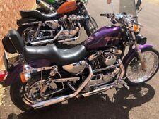 Harley Davidson sportster 1200 custom xl1200c 12k Miles stacks paperwork