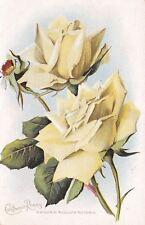 Sandy Utah Cancel~White Roses & Thorns~Kaiserin Augusta Victoria c1910