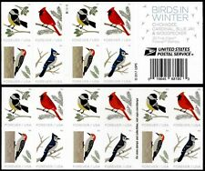 Us Birds In Winter Nature #5317-5320 Cardinal Blue Jay Woodpecker 20 Stamp Pane