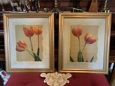 Pair Of Gold Framed Tulip Pictures 19 X 24