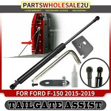 Rear Truck Tailgate Assist Shocks Gas Struts for Ford F-150 2015-2019 DZ43204