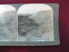 Stereoview Keystone View Co. No Mans Land Sea Of Barbed Wire Bulgarian WWI (O)