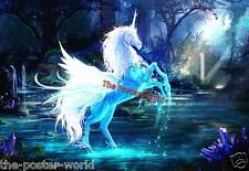 Beautiful Unicorn fantasy horse Picture Image Poster Wall Art Print New