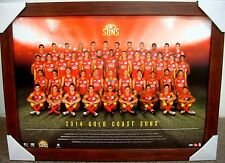 2014 GOLD COAST SUNS FOOTBALL CLUB OFFICIAL AFL TEAM PRINT POSTER FRAMED, ABLETT