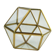 Modern Clear Glass Geometric Terrarium Box Tabletop Succulent Planter -Gold