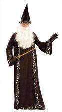 ADULT MERLIN WIZARD HAT & ROBE COSTUME DRESS FM59474