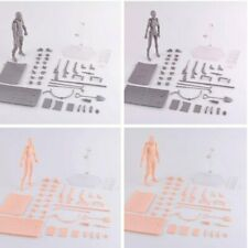 Drawing Figures For Artists Action Figure Model Human Mannequin Man / Woman Kit