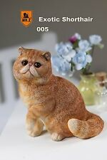 Mr.Z 1/6 Real Animal Series No.8 Exotic Shorthair Cat Garfield Statue 005