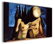 Quadri famosi Salvador Dali' vol XI Stampa su tela arredo moderno arte design