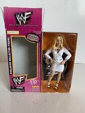 B7 1999 WWF WWE Jakks Diva Debra McMichael Toyfare Wrestling Action Figure Ex