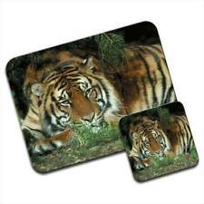 Tiger Mouse Mat / Pad & Coaster