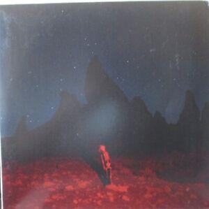 PHOEBE BRIDGERS - Punisher ~ GATEFOLD VINYL LP US PRESS + BOOKLET