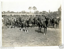 "British Army Cable Section Horses France 1915 World War 1 5x4"" Reprint Photo bl"