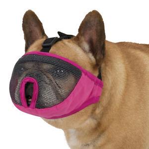 Dog Muzzle For Short Faced Breeds Soft Mesh Pug, English / French Bulldog, Boxer