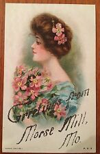 O78 Morse Mill Missouri MO Beautiful Lady Flowers Hair Glitter 1908 Vintage PC