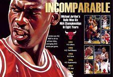 MICHAEL JORDAN'S NBA CHAMPIONSHIP BULLS COMMEMORATIVE POSTER
