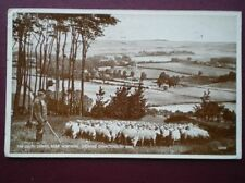 Worthing Single Collectable Sussex Postcards