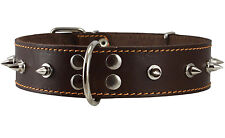 "Genuine Leather Dog Collar Spiked 19""-24"" neck 1.6"" wide Pitt Bull Rottweiler"